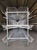 蛋鸡养殖自动化设备 层叠式蛋鸡笼