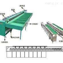 XGJ-Z海南岛火龙果选果机有没有厂家供货