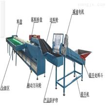 XGJ-DN周至猕猴桃电子选果机 效率高 电脑分选机