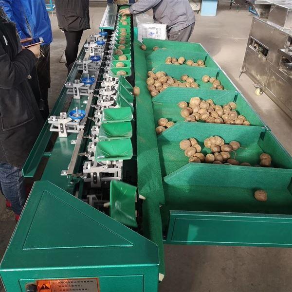 猕猴桃分拣机  眉县果蔬采后分级设备