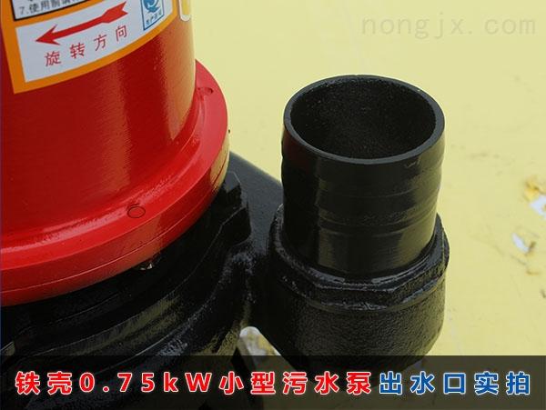 WQD8-12-0.75铁壳小型污水泵(750W普通家用污水泵)2寸出水口实拍