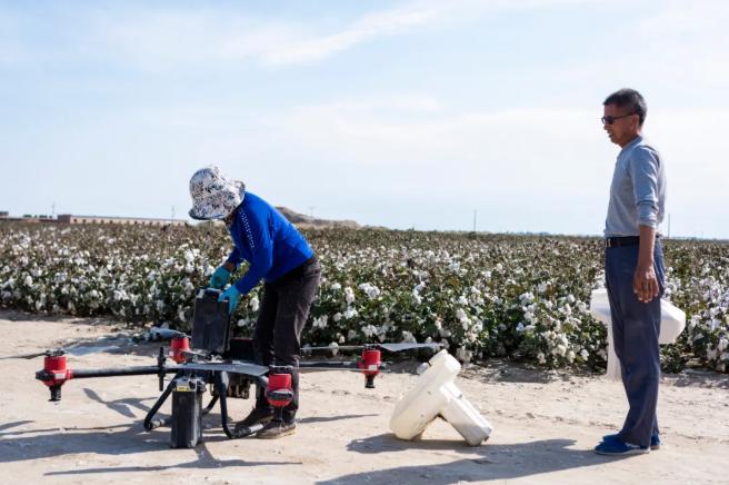 极飞如何帮助新疆棉农提升效益?