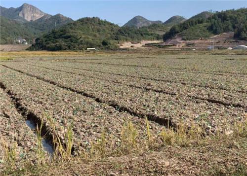第二十二届全国肥料信息交流暨产品交易会在陕西杨凌成功举办