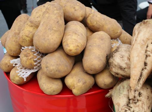 """12月03日:""""农产品批发价格200指数""""比昨天上涨0.46个点"""