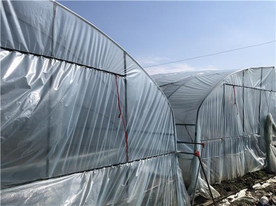 河北省关于对拟纳入试点的农机新产品温室大棚品目的公示
