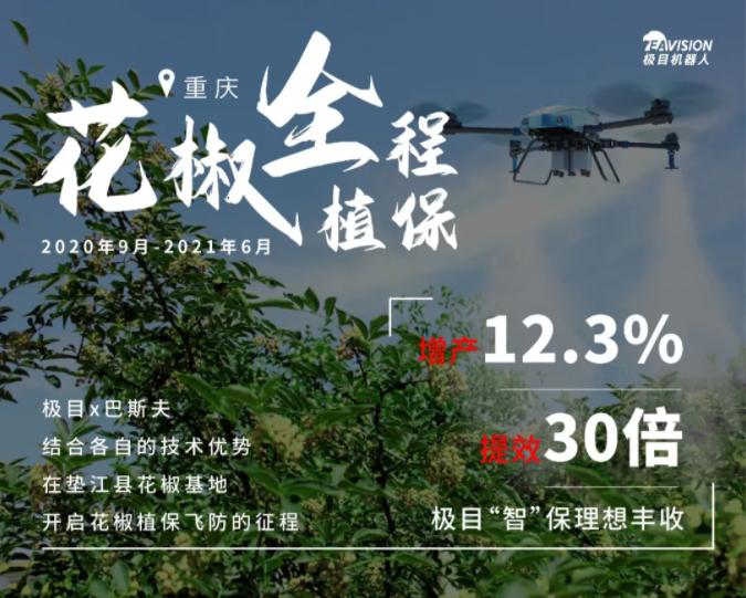 重庆|药机结合,绿色飞控护航花椒增产提效