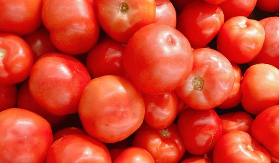 """9月7日:""""農產品批發價格200指數""""比昨天上升0.20個點"""